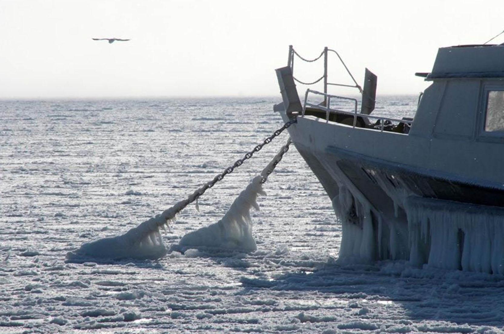 надевайте колготки на каких сайтах смотрят погоду моряки сложенном спрессованном