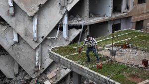 Сирия 22 марта 2017 года