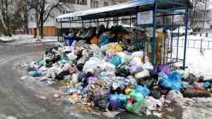 Франция будет утилизировать украинский мусор