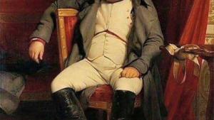 Наполеоновские планы незалежной