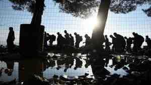 Утопленники из Ливии пойдут в Украину