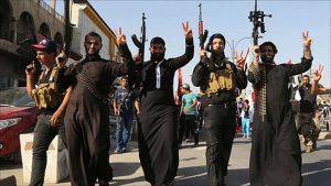 ИГИЛ как проамериканская частная армия