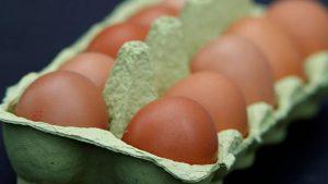 Власти Дании: в стране продано 20 тонн отравленных яиц