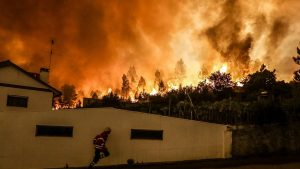 Португалия обратилась за помощью к ЕС в связи с лесными пожарами