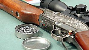 Росгвардия планирует ввести лицензию на приобретение пневматического оружия