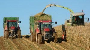 В США рассказали о невостребованности украинских продуктов в ЕС