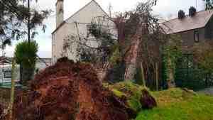 Число пострадавших от бури во Франции достигло 29 человек