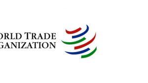 Участие в ВТО как одна большая санкция