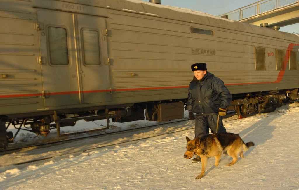 Украинца задержали запопытку вывезти из РФ запчасть отЗРК