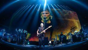 Как «Белые каски» пытались вербовать музыканта группы Pink Floyd