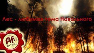 [Антифейк] Лес — любимая тема Навального