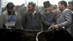 Пекин отрицает факт задержания одного миллиона уйгуров