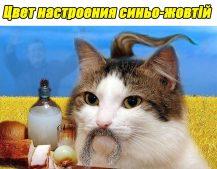 МОН Украины намерен «оптимизировать» правописание мовы