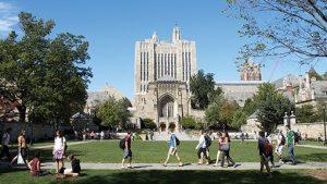 Массовая передозировка наркотиками произошла у Йельского университета