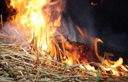 Вслед за арсеналами на Украине горят зернохранилища