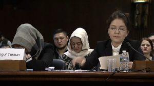 история Михригул Турсун представлена перед Исполнительной комиссией Конгресса США