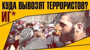 Куда курды вывозят террористов ИГ?