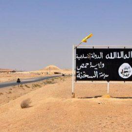 СМИ: Багдади скрывается в бегах между Сирией и Ираком. ИГ готовится атаковать Пальмиру