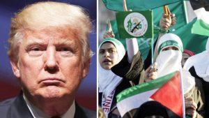 СМИ: США готовятся признать «Братьев-мусульман» террористической организацией