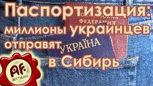 Выдача паспортов на Донбассе: миллионы украинцев хотят отправить в Сибирь