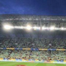 СМИ Сербии поражены «примитивными и убогими» выходками украинских «болельщиков»