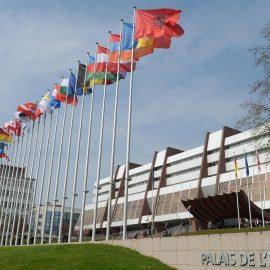 Киев обязан позвать на выборы делегацию Ассамблеи – ПАСЕ