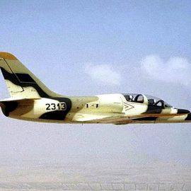 Подбитый армией Хафтара самолет приземлился в Тунисе