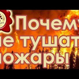 Почему не тушат пожары