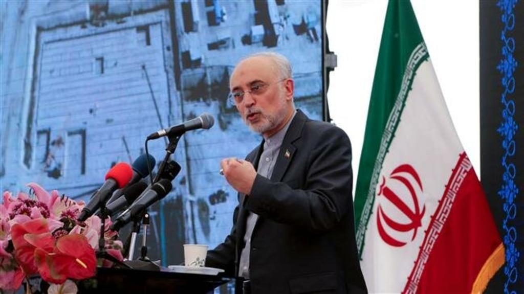 Глава Ведомства атомной энергии Ирана (AEOI) Али Акбар Салехи