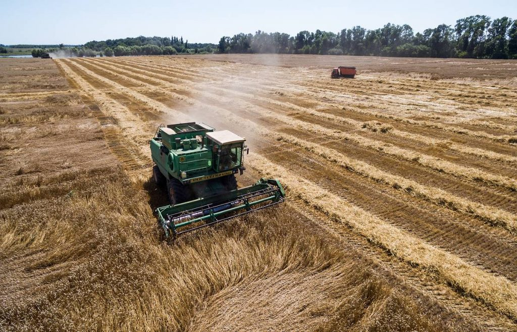 Болгария входит в число мировых экспортёров зерновых