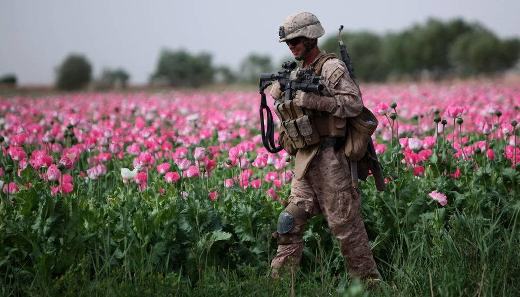 производство наркотиков в Афганистане  и НАТО, США