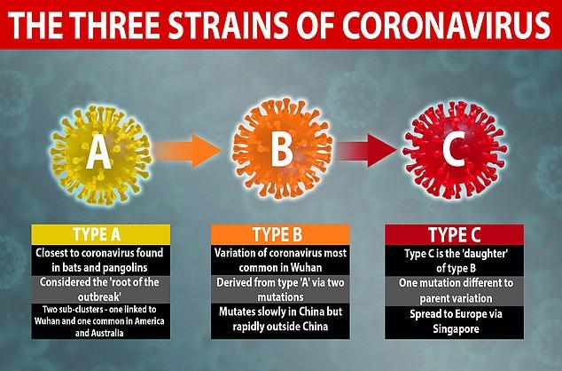 три мутации коронавируса