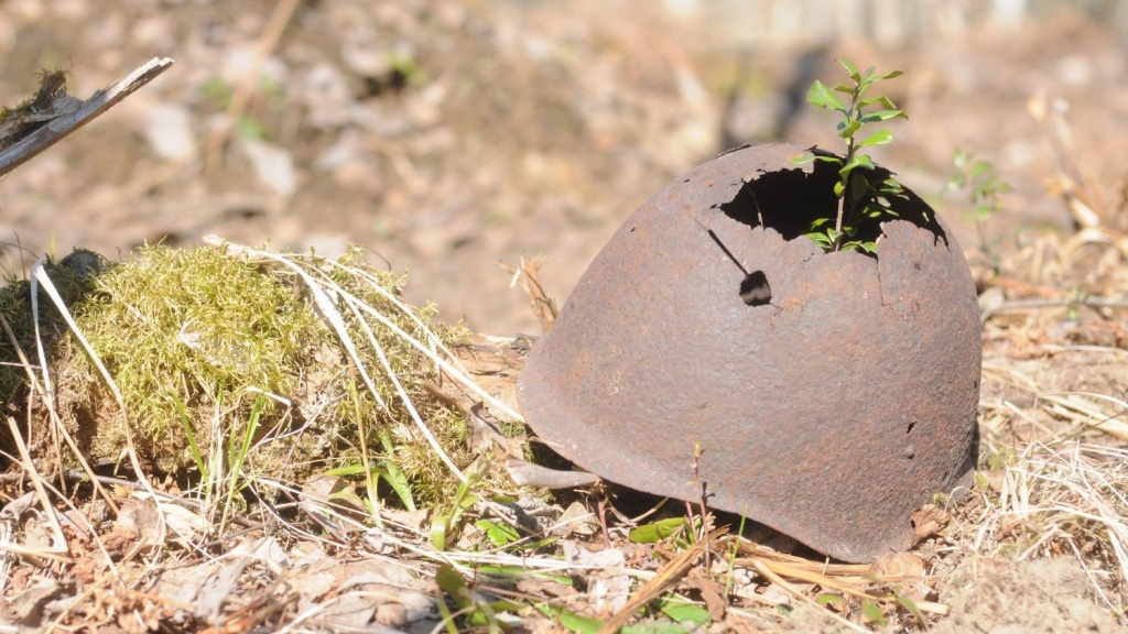 Поисковики смогли найти в Чехии могилы тысяч красноармейцев