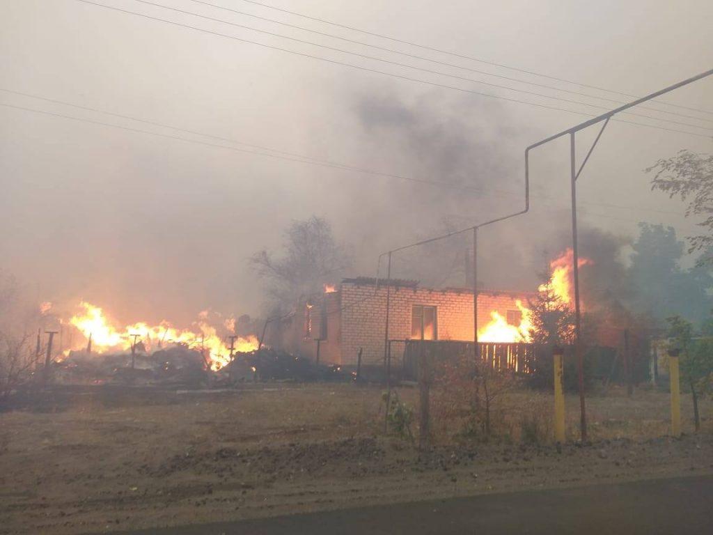 НМ ЛНР: Боевики ВСУ поджигали леса в оккупированной зоне Донбасса
