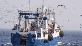 Политика ЕС вынудила рыбаков Латвии переехать в Россию в поисках работы