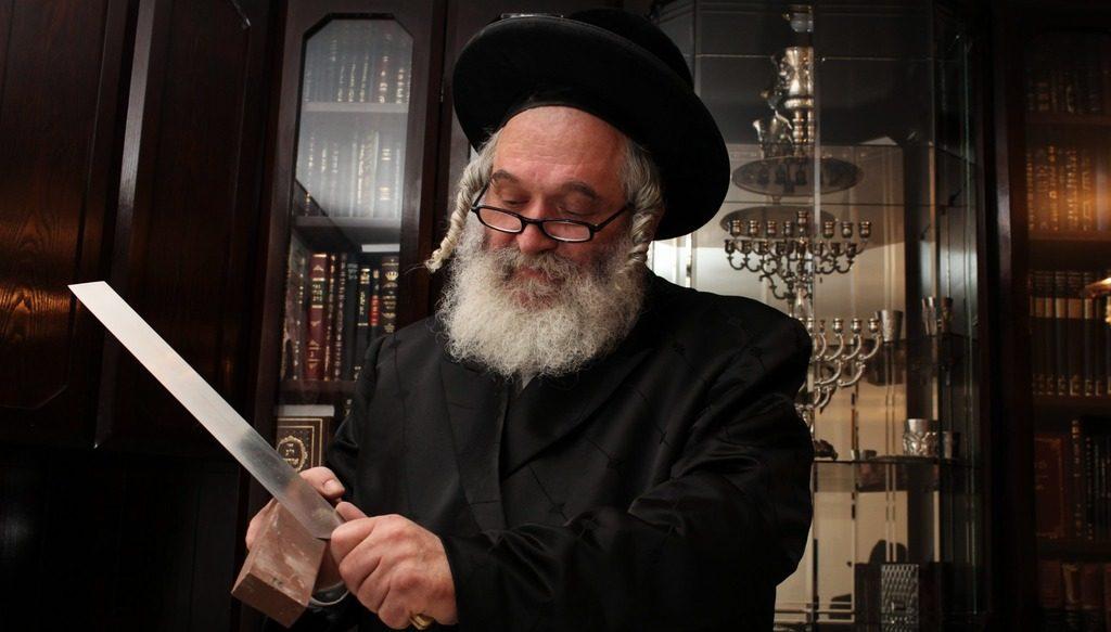 еврейская шехита, убой животных