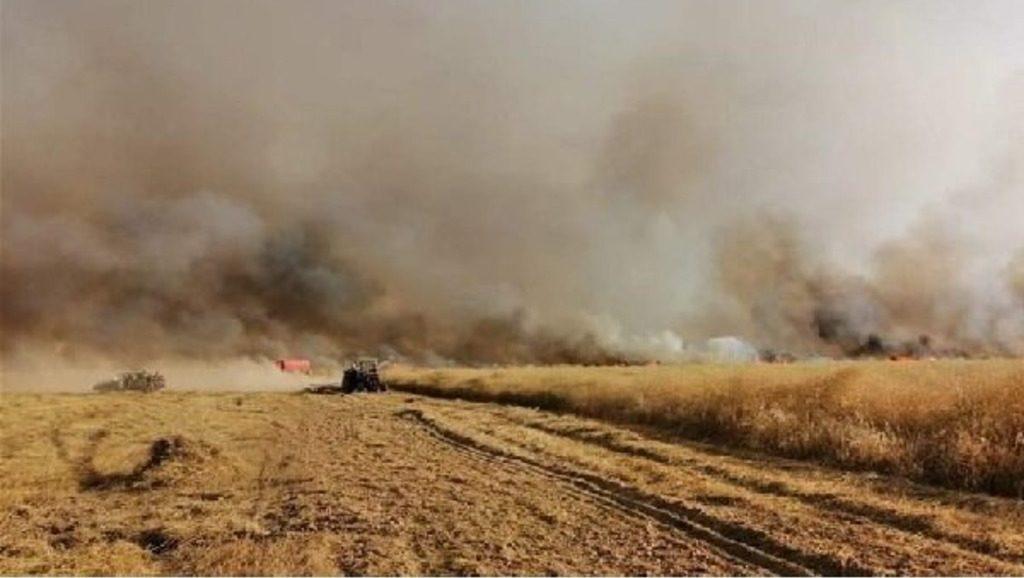 США воруют и уничтожают сирийское зерно и посевы