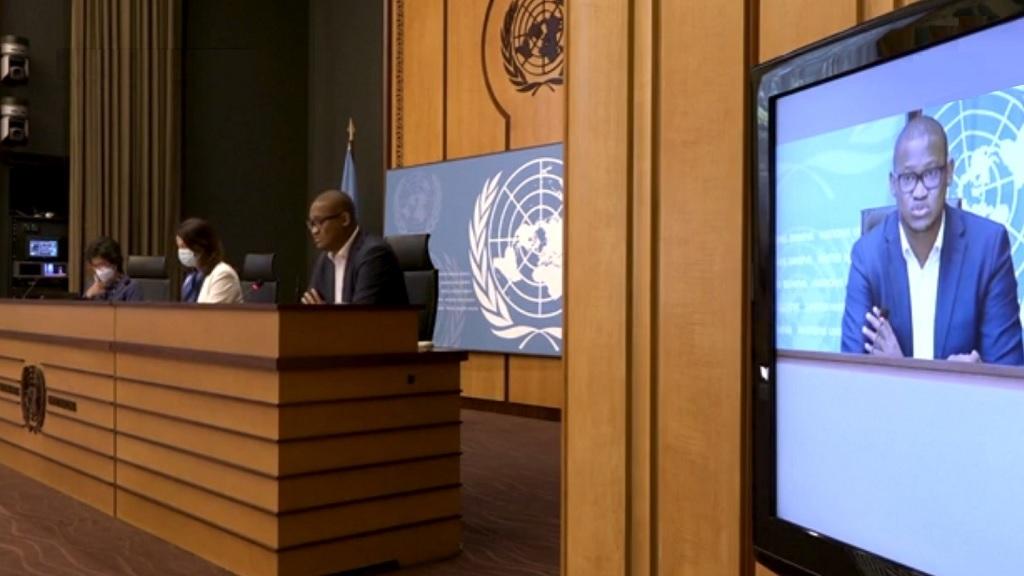 онлайн встреча в ООН