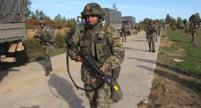 Медведь защитил сербскую гору Манячу от вояк НАТО
